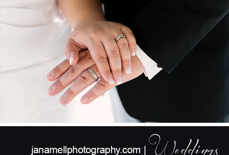 Michelle + Alex: A Curran Wedding